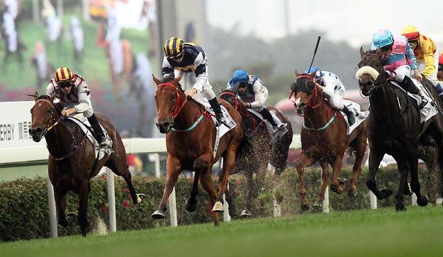 koňský závod.jpg